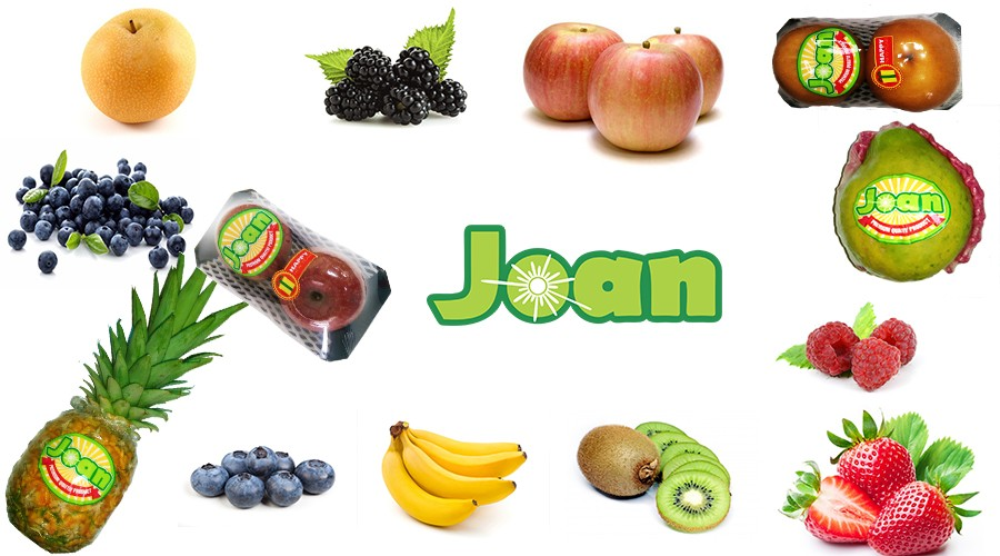 About Joan Fruit